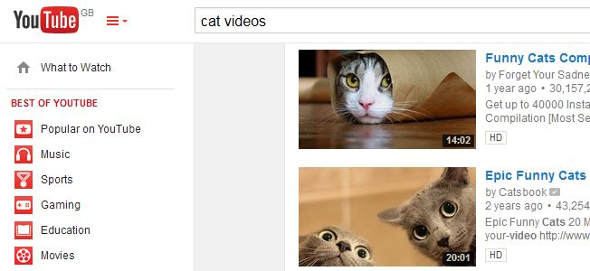 "YouTube search for ""cat videos"""